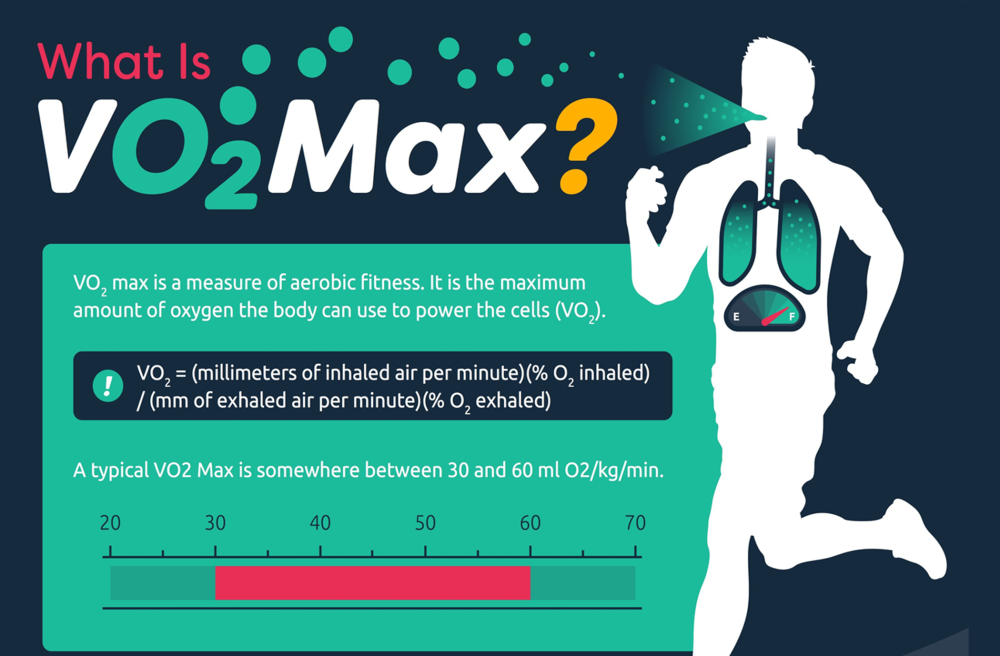 vo2 max.png